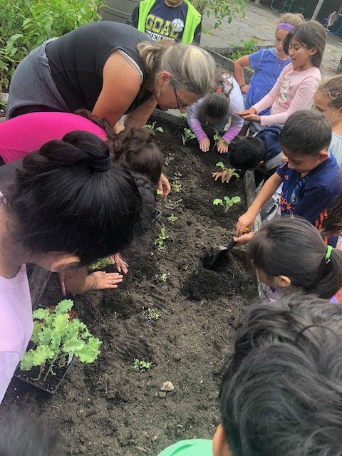 A group of children digging and planting in a raised garden bed.