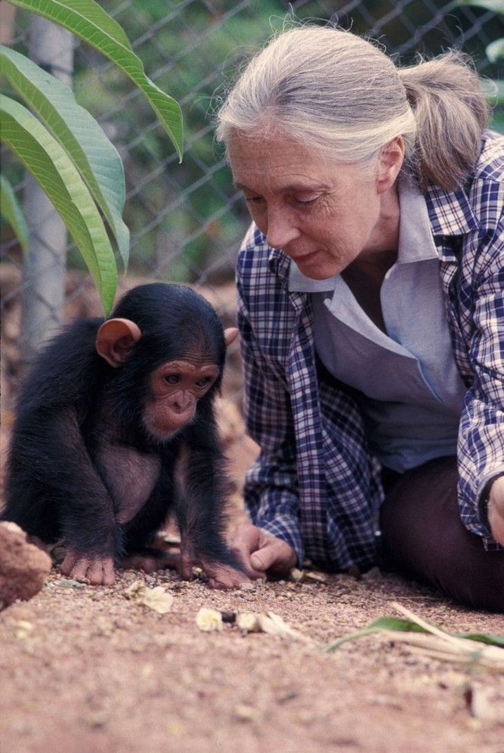 Skyping with Jane Goodall