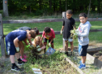 Students work on gardens during Day of Service