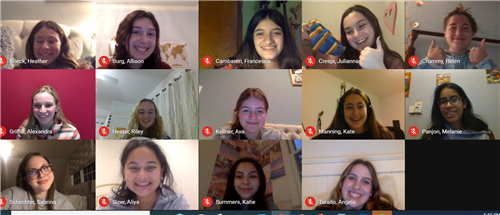 Google Meet screenshot of FLHS's Girls in STEM club members