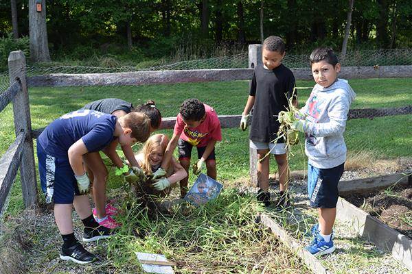 West Patent students work in garden